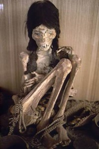 momia 3