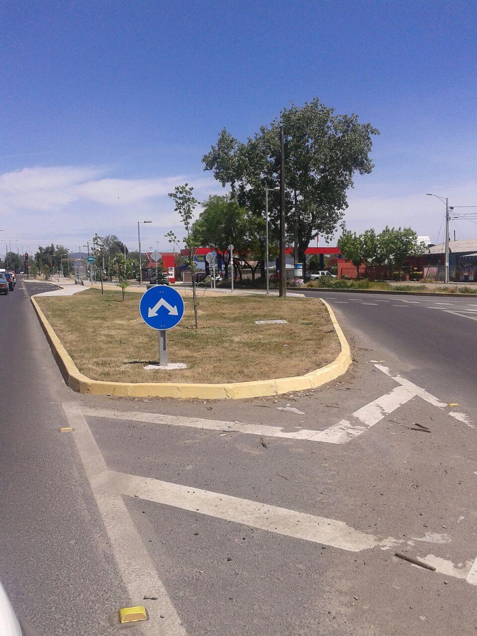 AV. florida