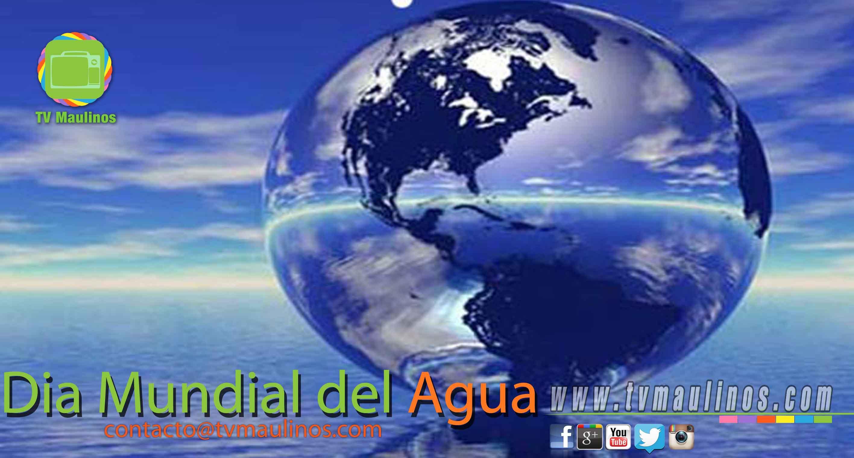 Hoy es el d a mundial del agua tvmaulinos for Hoteles maldivas sobre el agua